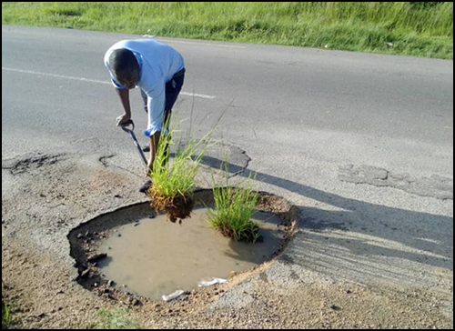 Planting tufts of grass in giant pothole